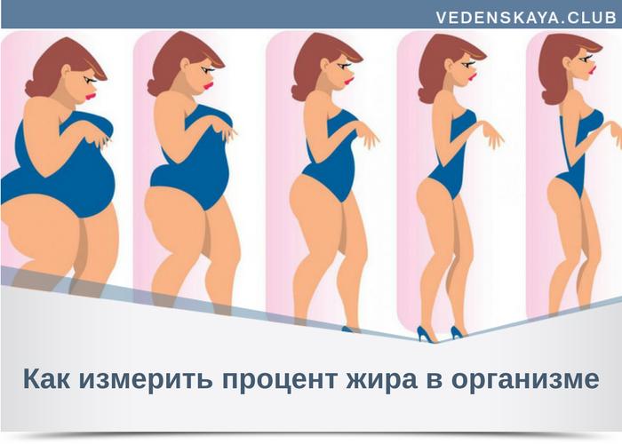 определить процент жира в организме