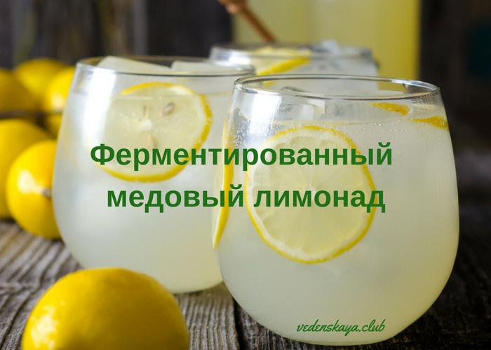 Ферментированный лимонад